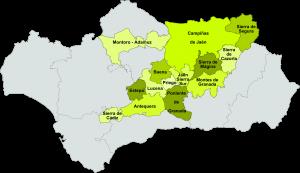 Carte AOC huile d'olive vierge - Andalousie - Espagne