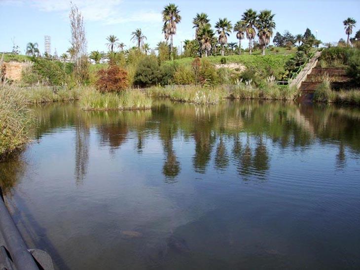 jardin-botanique-huevla