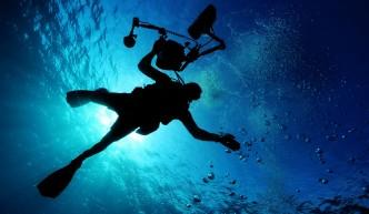 Plonger - Cap de Gata - Andalousie
